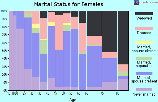 Zip code 38863 marital status for females