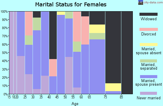 Zip code 38871 marital status for females