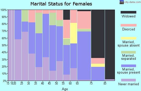 Zip code 38967 marital status for females