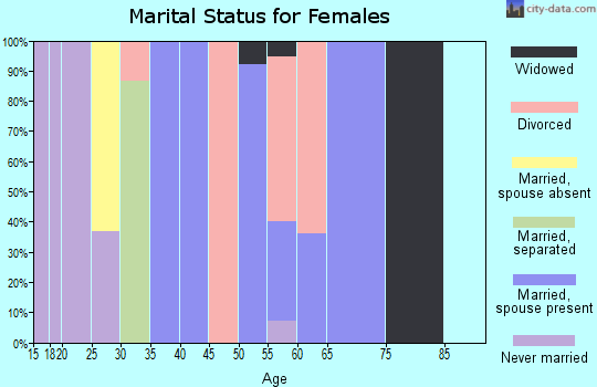 Zip code 41804 marital status for females