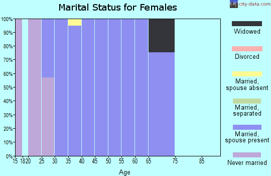 Zip code 42054 marital status for females