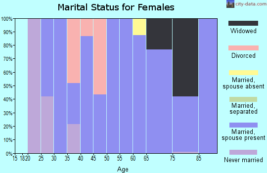 Zip code 42079 marital status for females