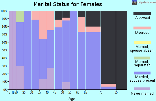 Zip code 42325 marital status for females
