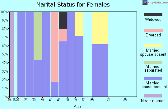 Zip code 42333 marital status for females