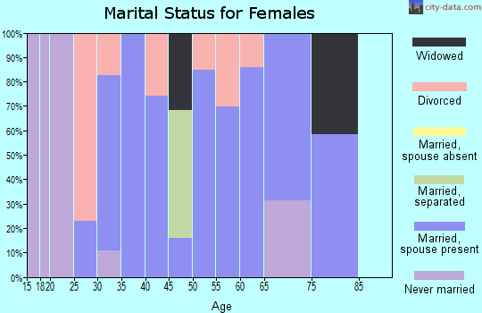 Zip code 42528 marital status for females