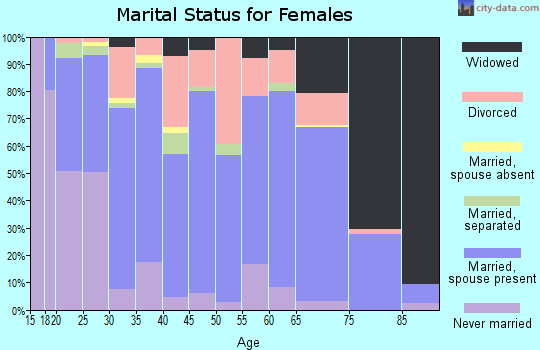 Zip code 42539 marital status for females