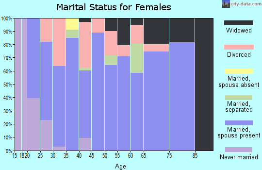 Zip code 43406 marital status for females