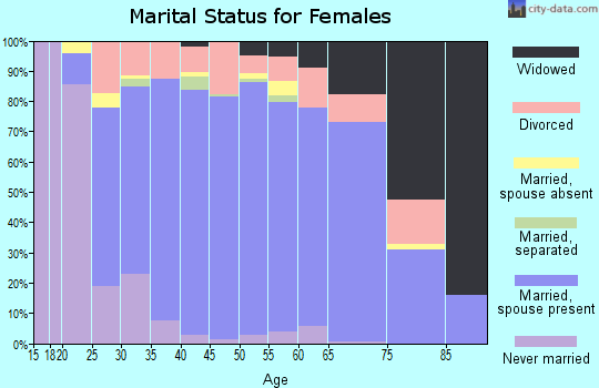 Zip code 45502 marital status for females
