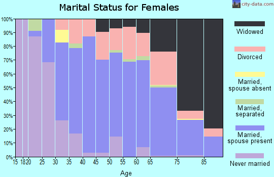 Zip code 46001 marital status for females