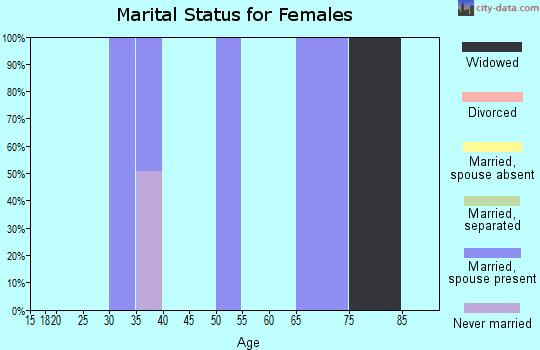 Zip code 46110 marital status for females