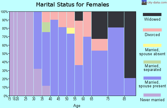Zip code 46349 marital status for females