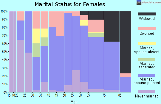 Zip code 46506 marital status for females