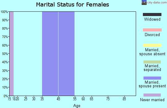 Zip code 46513 marital status for females