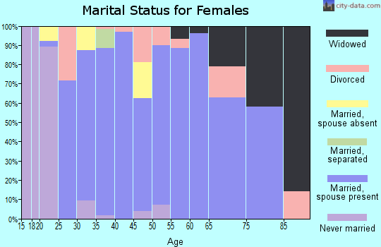 Zip code 46538 marital status for females