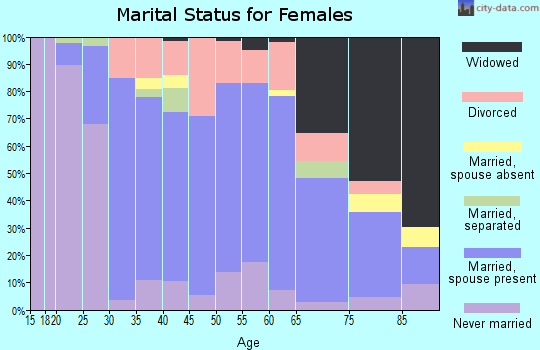 Zip code 48128 marital status for females