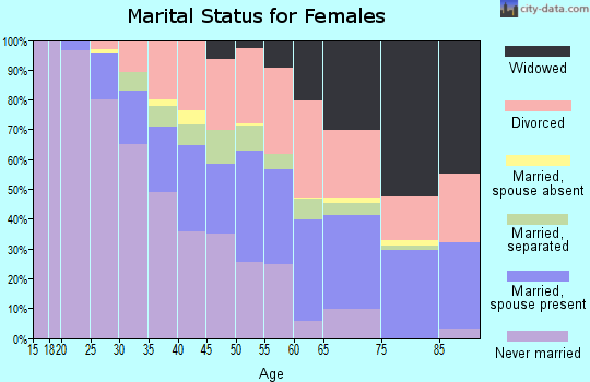 Zip code 48141 marital status for females
