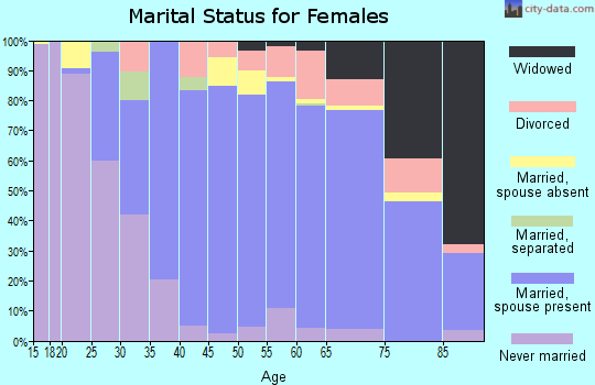 Zip code 48304 marital status for females