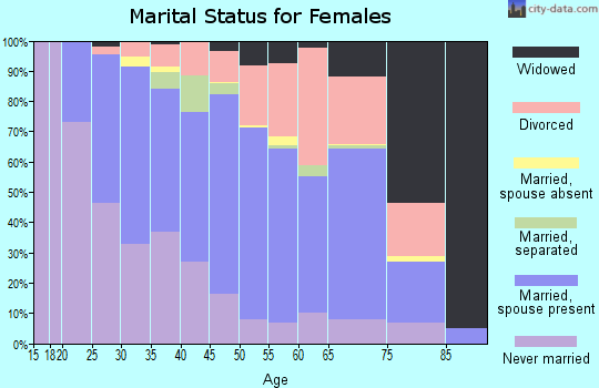 Zip code 48335 marital status for females