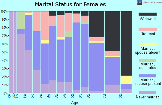 Zip code 48413 marital status for females