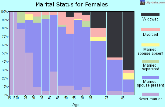 Zip code 48441 marital status for females