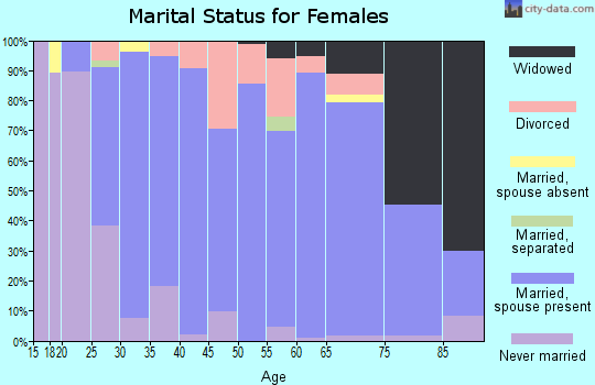 Zip code 48637 marital status for females