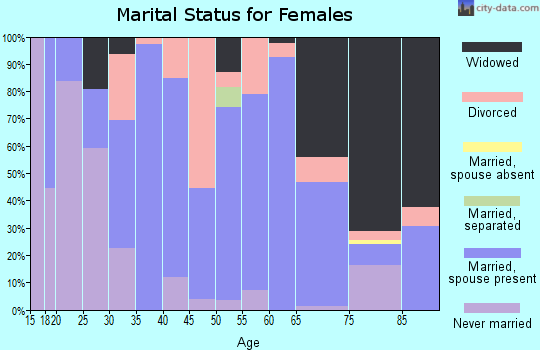 Zip code 49040 marital status for females