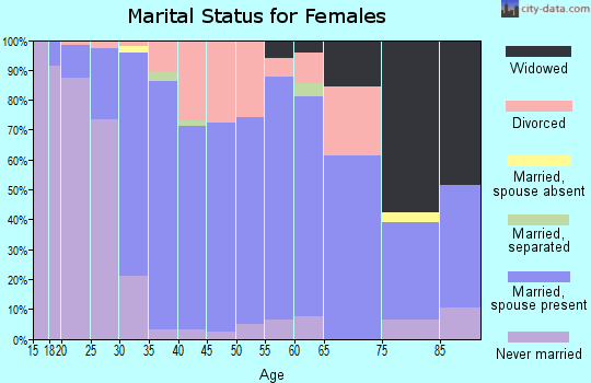 Zip code 49080 marital status for females