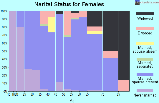 Zip code 49095 marital status for females
