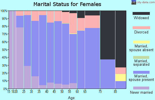 Zip code 49240 marital status for females