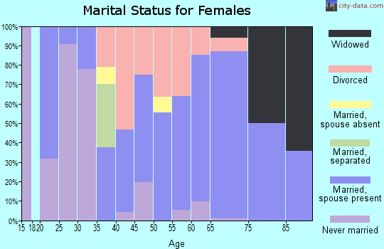 Zip code 49253 marital status for females