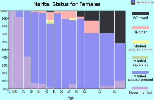 Zip code 49301 marital status for females
