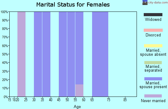 Zip code 49335 marital status for females