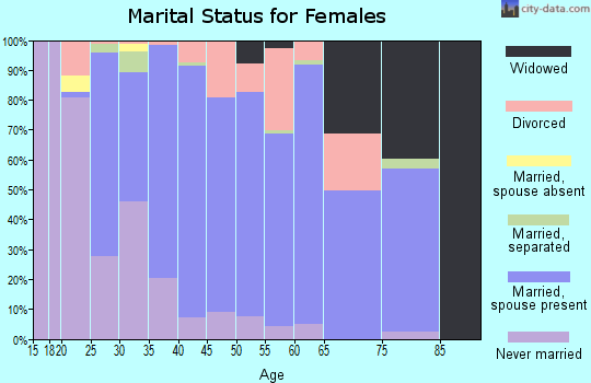Zip code 49343 marital status for females