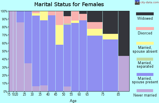 Zip code 49411 marital status for females