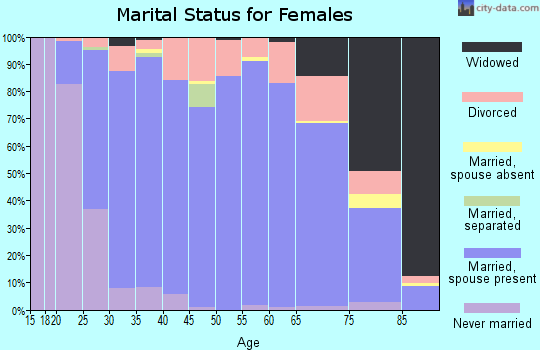 Zip code 49428 marital status for females