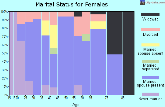 Zip code 49448 marital status for females