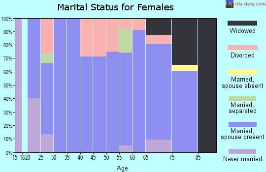 Zip code 49613 marital status for females