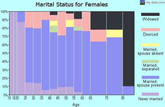 Zip code 49713 marital status for females