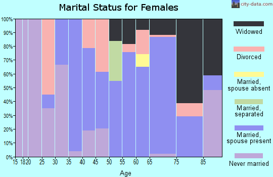 Zip code 49969 marital status for females