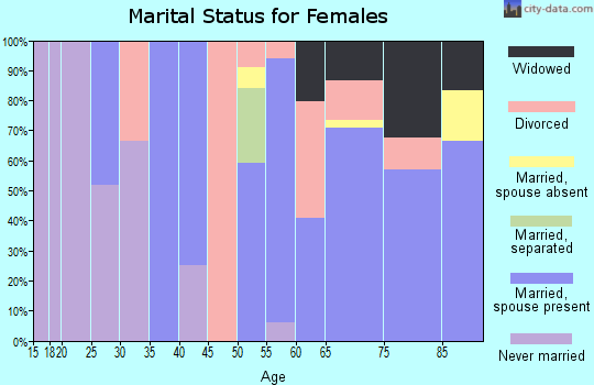 Zip code 51331 marital status for females