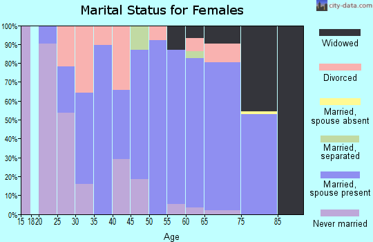 Zip code 51347 marital status for females