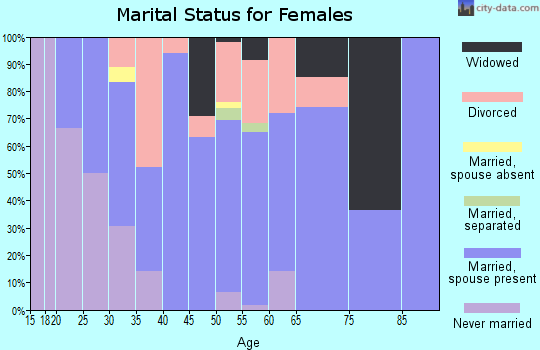 Zip code 53506 marital status for females