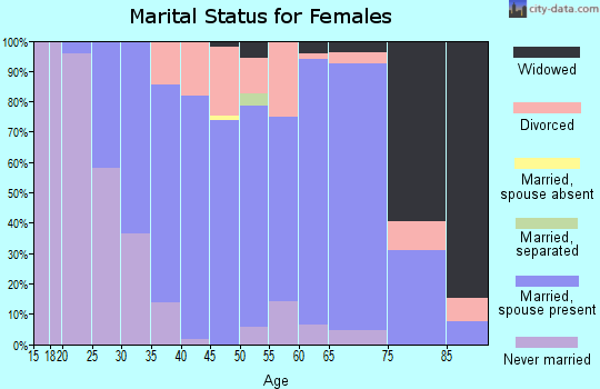 Zip code 53528 marital status for females