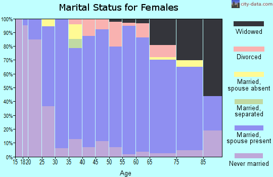 Zip code 55382 marital status for females
