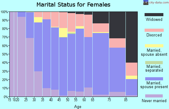 Zip code 55906 marital status for females