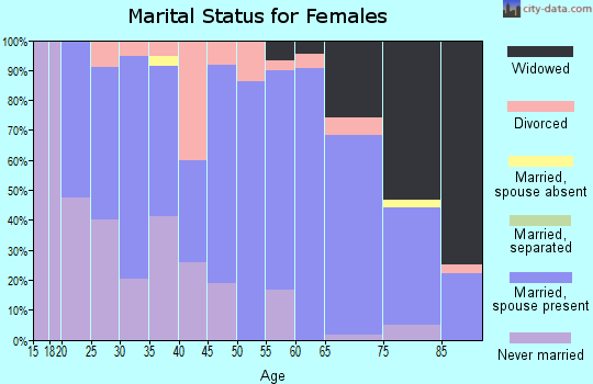 Zip code 55939 marital status for females
