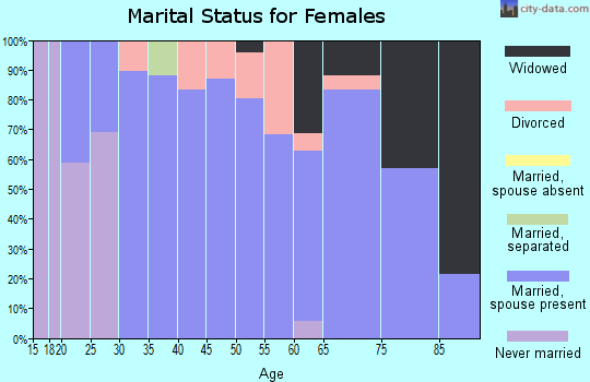 Zip code 55941 marital status for females