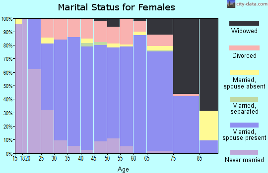 Zip code 55943 marital status for females