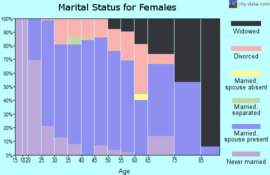 Zip code 55944 marital status for females