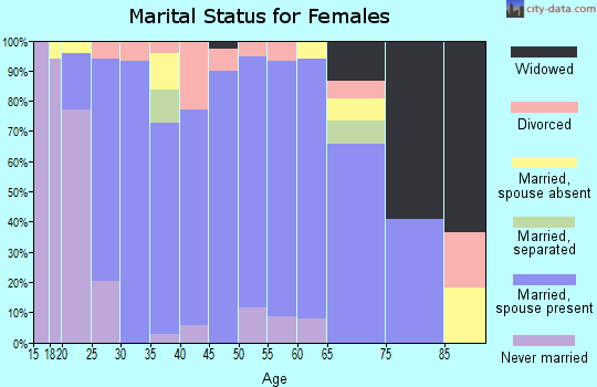 Zip code 55955 marital status for females